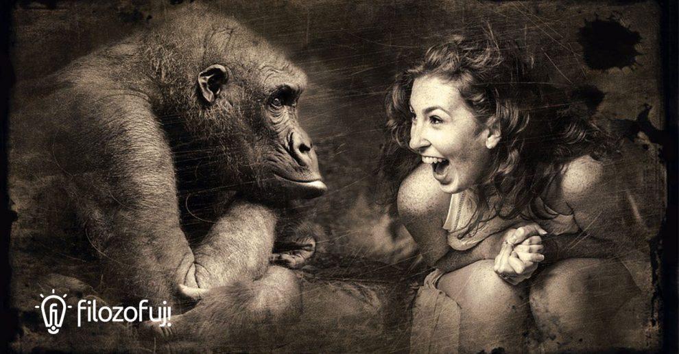Ewolucja śmiechu