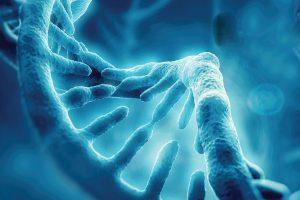 filozofuj spory bioetyczne okladka